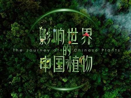 国内首部植物纪录片将于世园会推出!