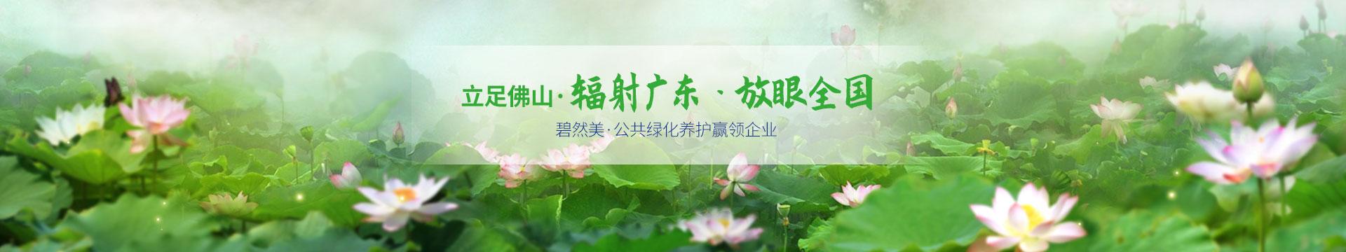 碧然美-公共绿化养护赢领企业